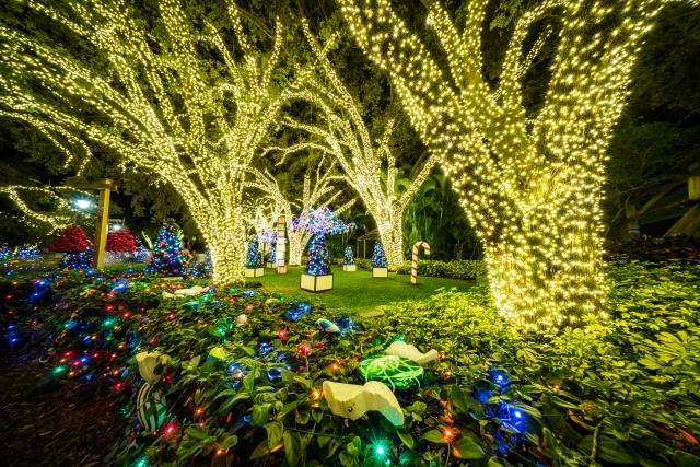 Busch Gardens Christmas Town now open – Carlos Eats